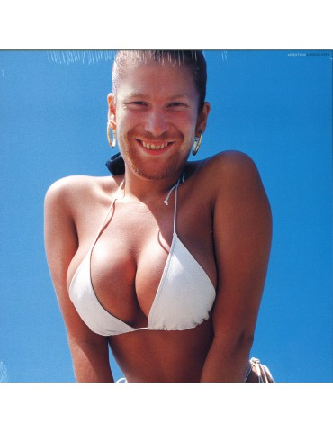 Aphex Twin ‎– Windowlicker