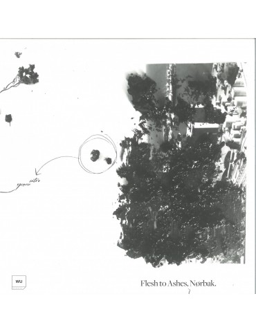 Nørbak – Flesh To Ashes