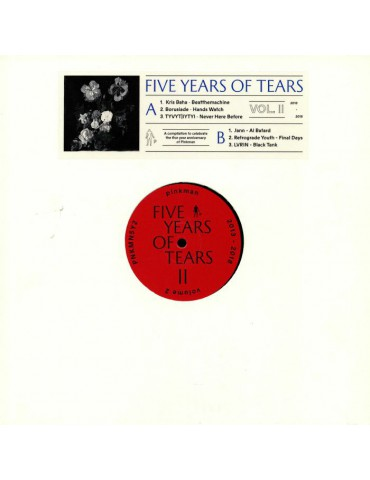 Various ‎– Five Years Of...