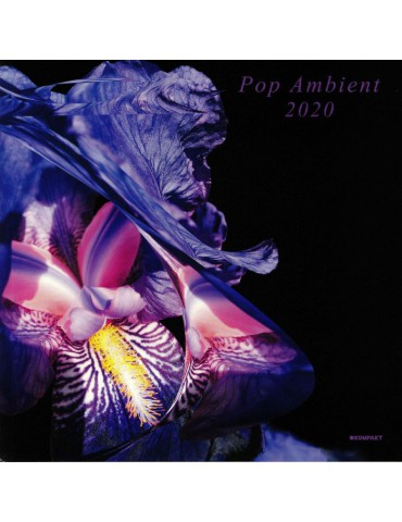 Various ‎– Pop Ambient 2020...